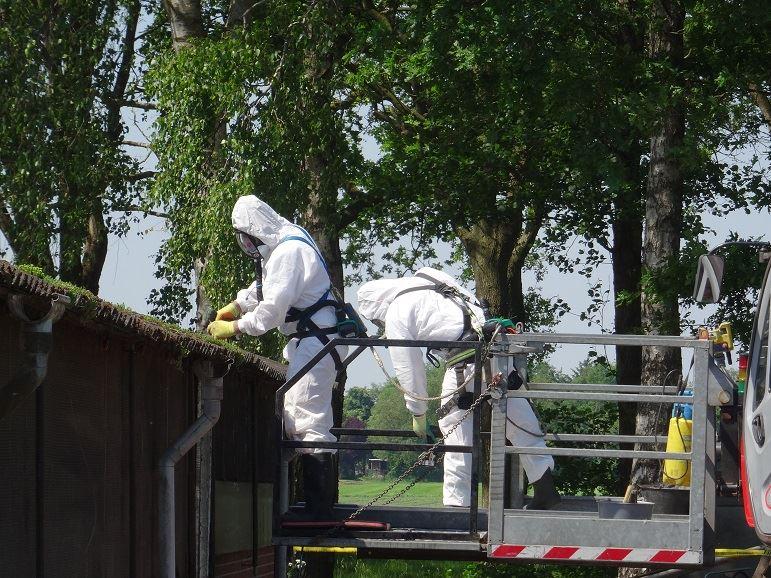 asbestsanering/asbestverbod
